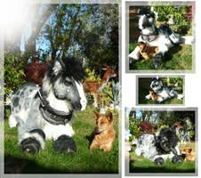 Fuzzy Pony and Doggie by LilleahWest