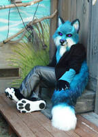 teal fox feetpads by LilleahWest