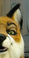 sly red fox sneek peek