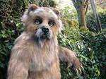 Grubbs Grizzly closeup