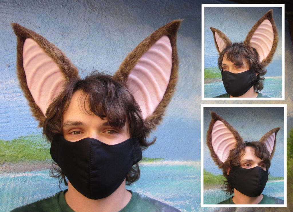 Bat ears by LilleahWest