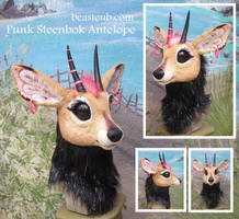 Steenbok Antelope head by LilleahWest