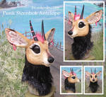 Steenbok Antelope head