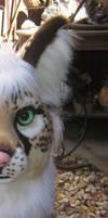 Cheefox sneek peek