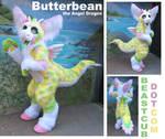 Butterbean the Angel Dragon