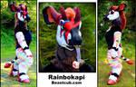 Rainbokapi - Customer Photos
