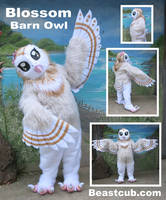 Barn Owl - Selling! Taking offers by LilleahWest
