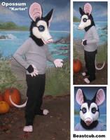 Opossum by LilleahWest