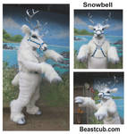 Snowbell Version 2.0