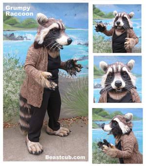 Grumpy Raccoon