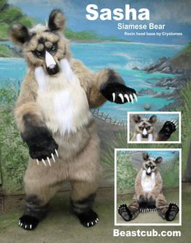 Siamese (Seal Point) Bear