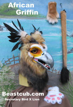 African Griffin FOR SALE