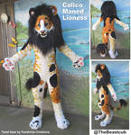 Calico Maned Lioness