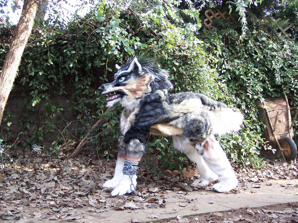 wolf link costume view 3 by LilleahWest