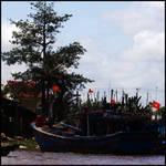 Rivers in Vitnam 1