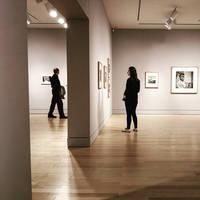 art gallery zen