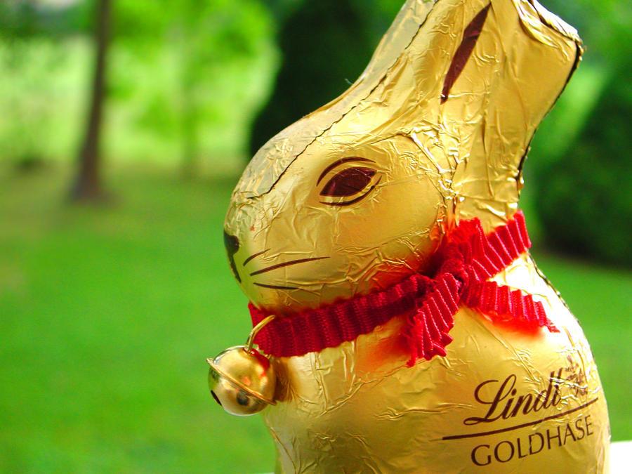 lindt goldhase schokolade 1000 gramm chocolate osterhase ostern 1 kg chocoladen ebay. Black Bedroom Furniture Sets. Home Design Ideas