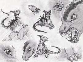 Dragons by Frankyding90
