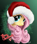 Merry Christmas from Fluttershy