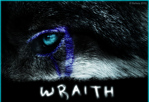^ Twilightstars ^ Wolves Wraith_2_by_Befera