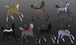 July Foal Adopts! - CLOSED