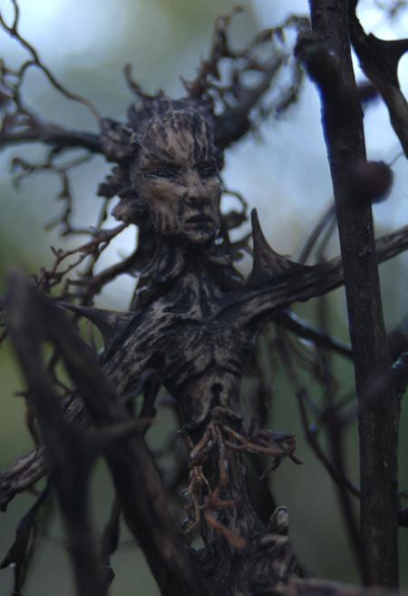 alder, tree spirit by chicorydell