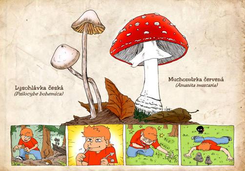 Mushrooms mush mush