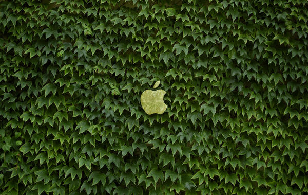 Eco Apple wallpaper