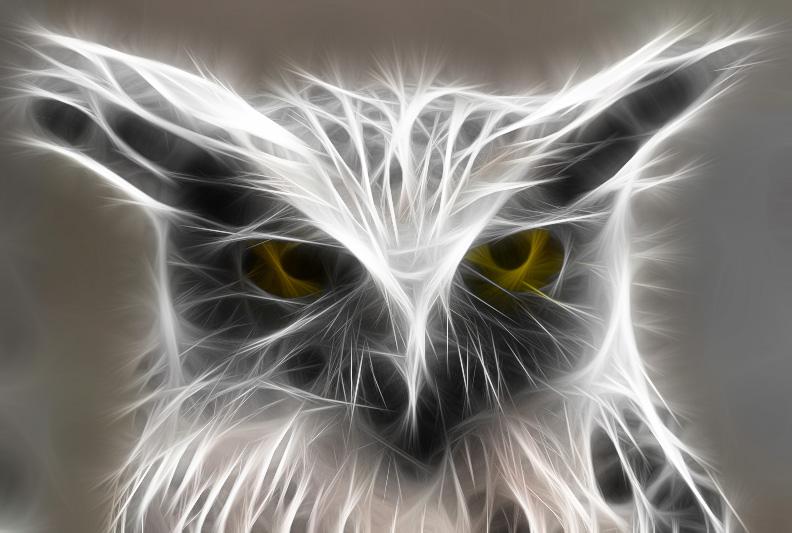 Burung Hantu By Tommyina96 On Deviantart