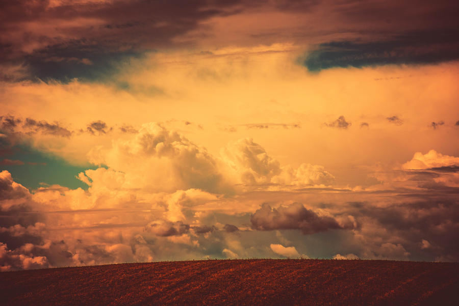 Dreamers field by BeautifulDisasterIam