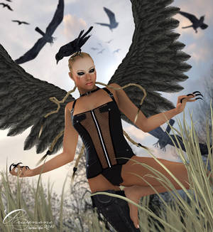 Mistress of the Crows II
