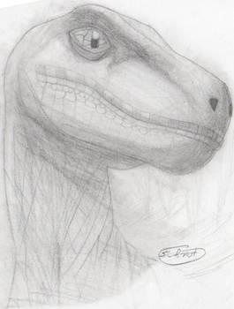 Day 4-Jurassic Park