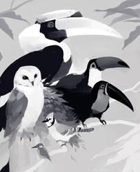 Aviary by Mr--Jack