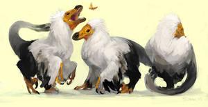 Raptors II