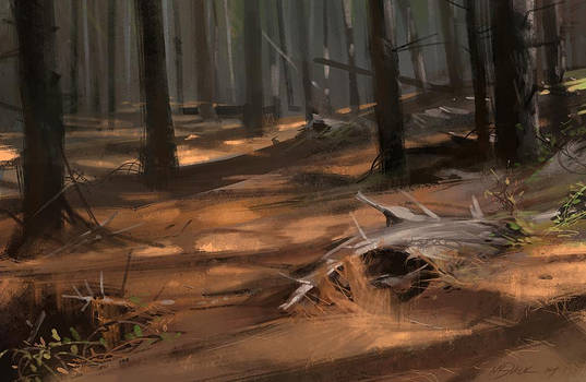 Soft Pine