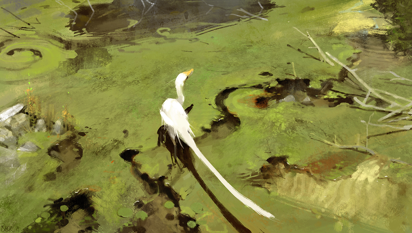 Wading by Mr--Jack