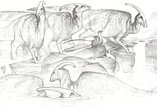 Parasauroloph
