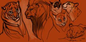 Kitties by Mr--Jack