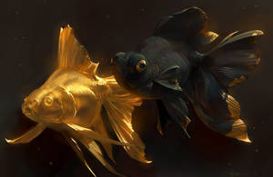 Golden Fishes