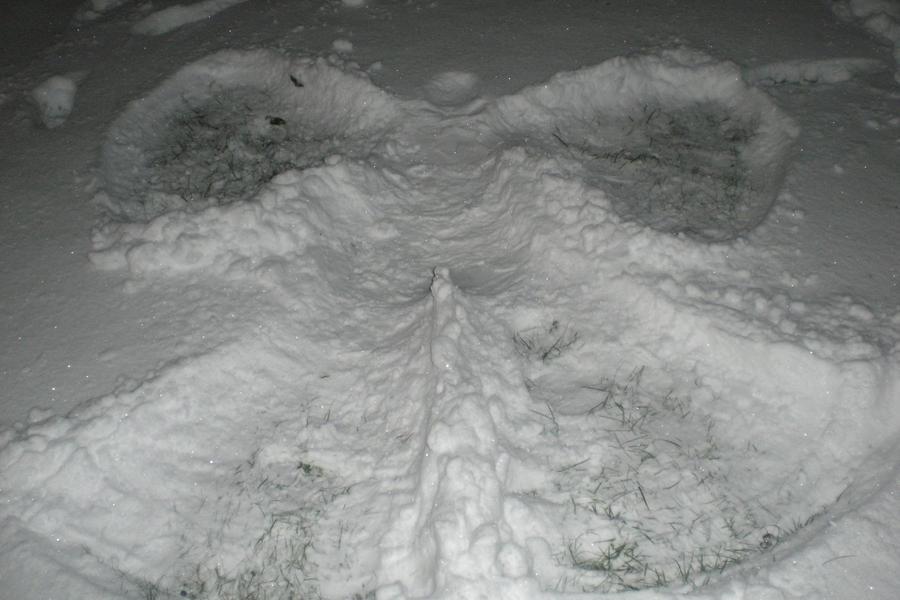 Snow Angel by T0rnado2