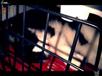 prison by fdream