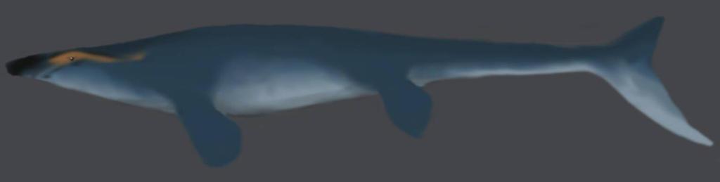 platecarpus speed doodle by SpinoSushi