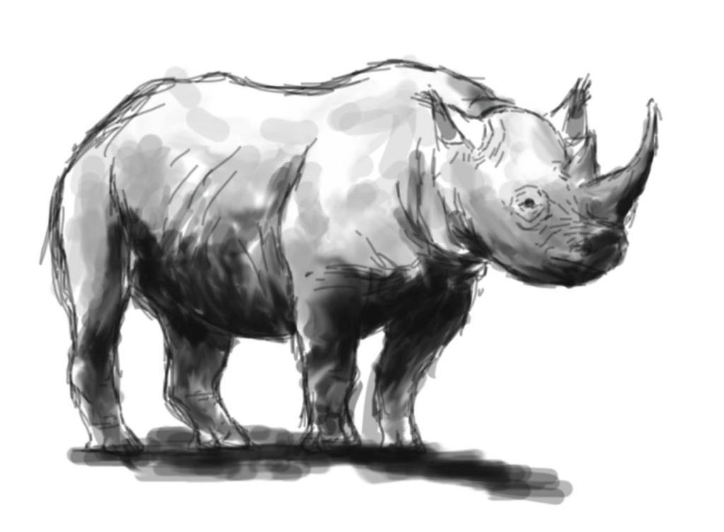 rhinobois by SpinoSushi