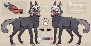 Sylas Reference 2018 by xeplin