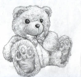 teddy by LuckyAcorn