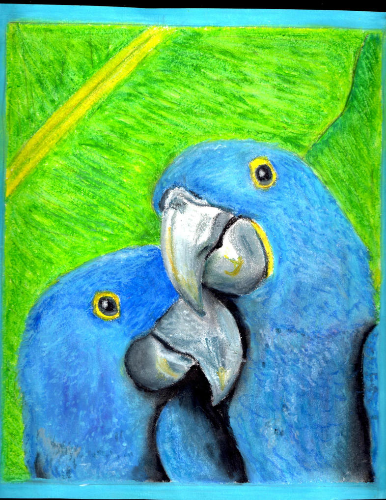 BirdHug by CassAllsworth