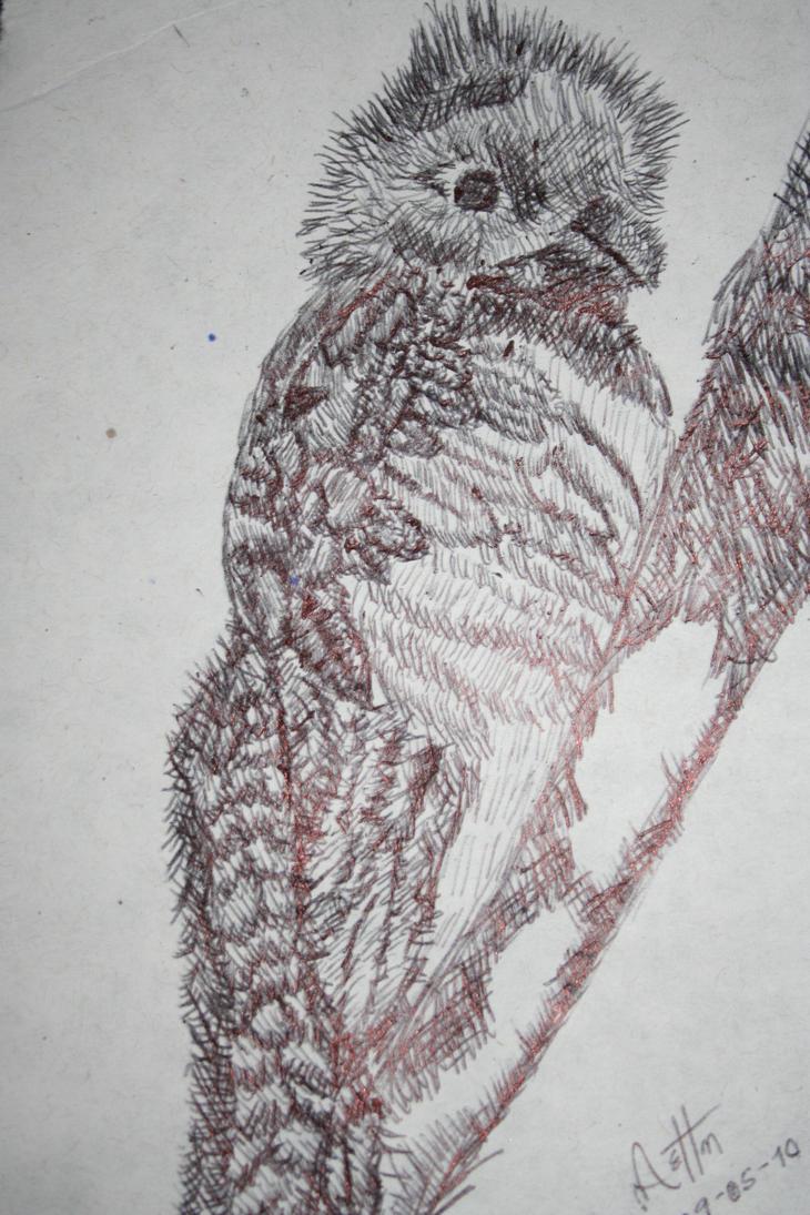 Quetzal by RainingLemons