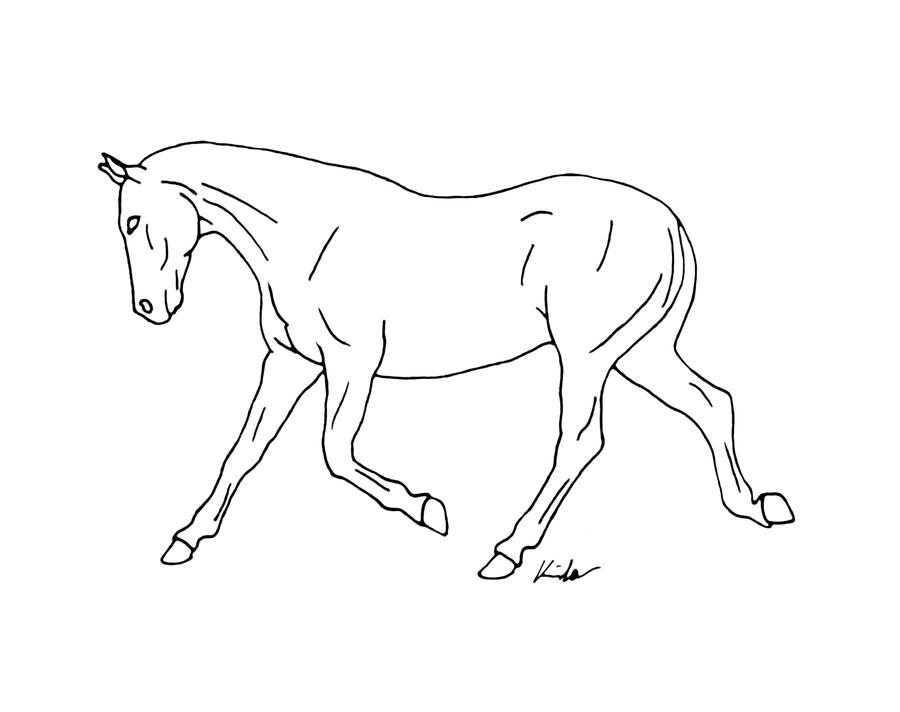 Trotting horse drawing