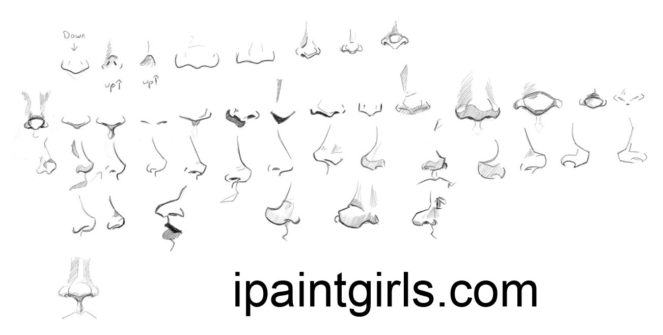 Line Drawing Nose : Many noses reference by discipleneil on deviantart