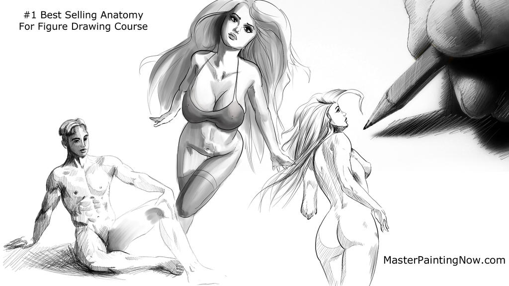 Best Selling Anatomy course for Figure Drawing by discipleneil777